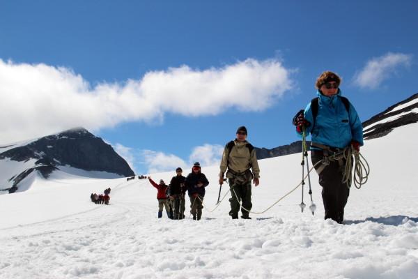 Галлхёпигген восхождение Группа идет по леднике спускается с Галлхёпигген (Galdhopiggen) 2,469 м - самая высокая вершина скандинавских гор.г