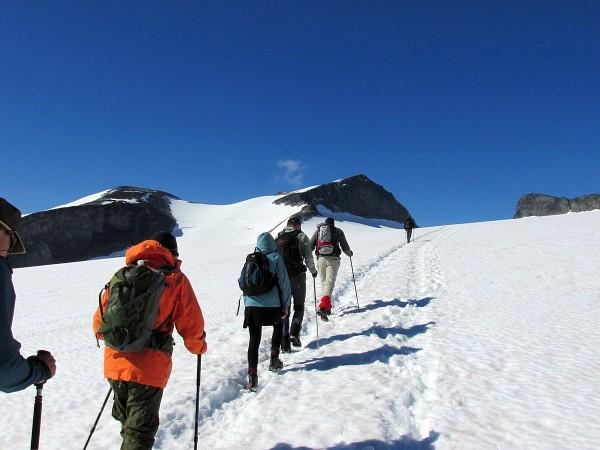Галлхёпигген восхождение подъем на Галлхёпигген (Galdhopiggen) 2,469 м - самая высокая вершина скандинавских гор.