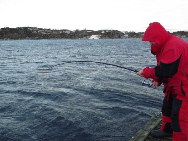 Рыбалка в Норвегии с лодки в море рыболовный тур Норвегия