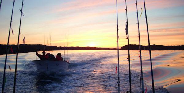 тур морская рыбалка в Нрвегии