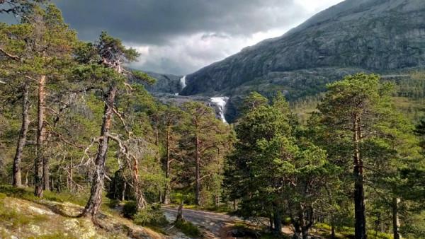 Лес и водопады в Норвегии