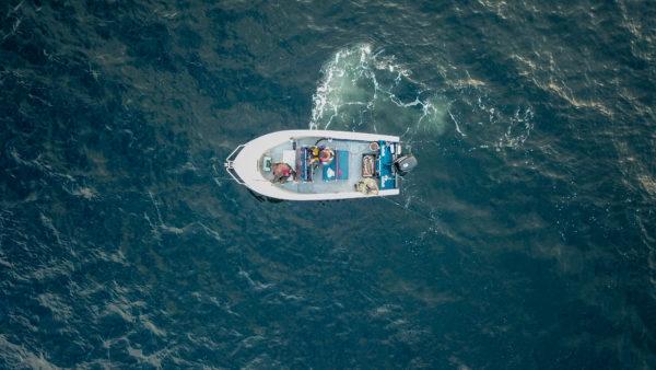 Лодка в море норвегия рыбалка