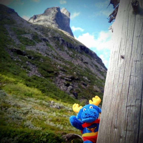 Лось символ Норвегии